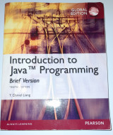 INTRO TO JAVA PROGRAMMING, BRIEF GLOBAL