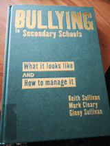 Bulling In Secondary Schools