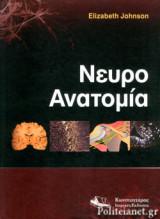 Νευροανατομία