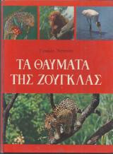 Τα θαύματα της Ζούγκλας